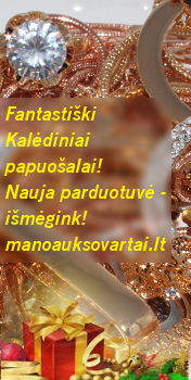 ManoAuksoVartai.lt - for everyone